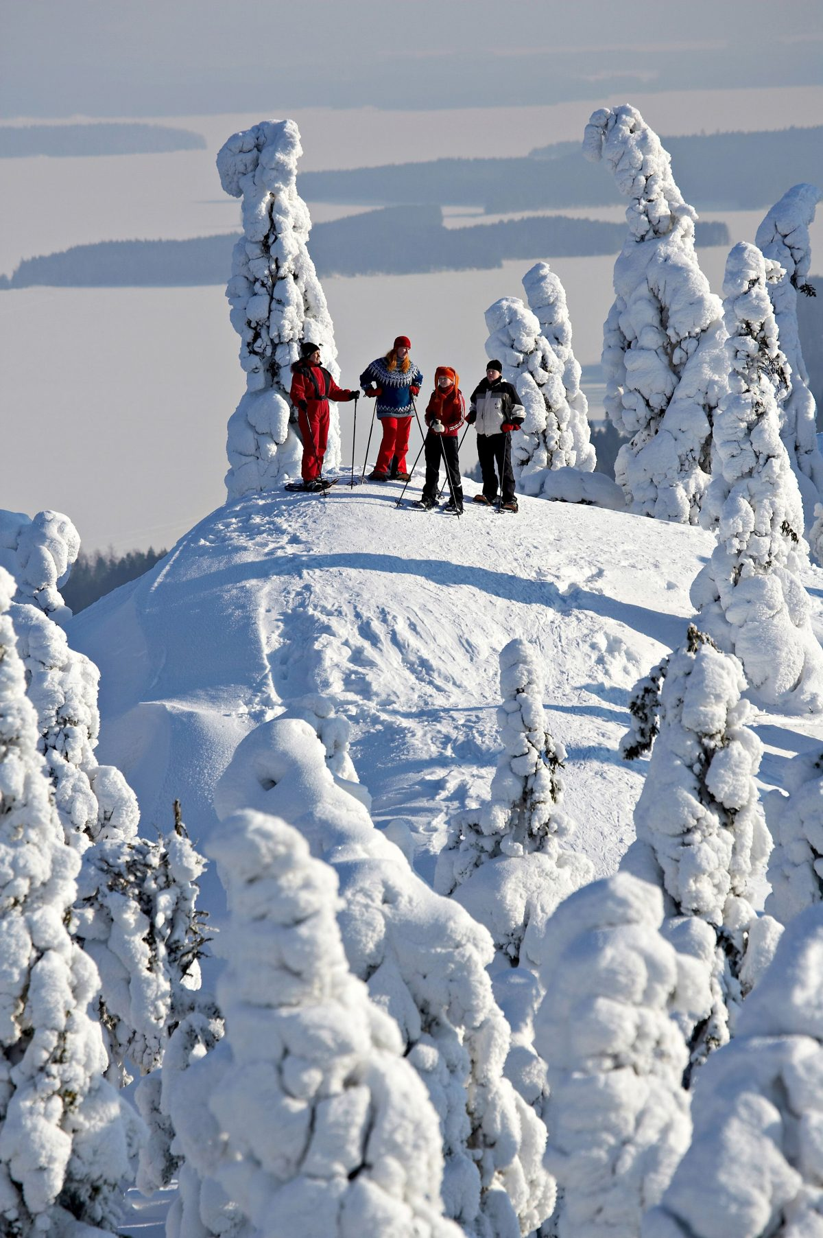 Snowshoeing on the Koli hill