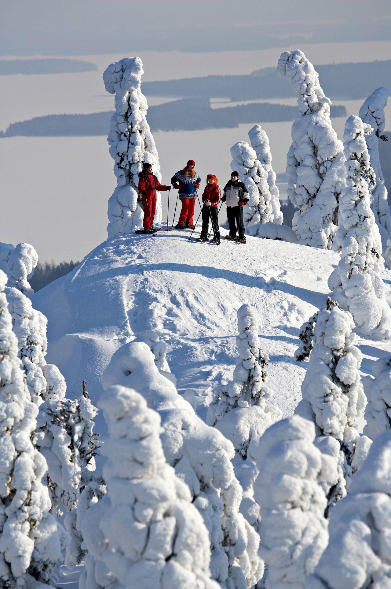 Snowshoeing on the Koli hill